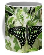 Tailed Jay Butterfly #2 Coffee Mug