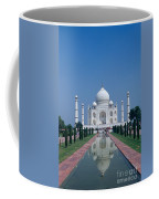 Taj Mahal View Coffee Mug