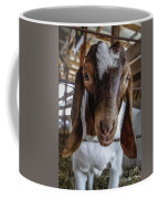 Take Me Home Coffee Mug