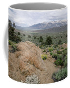 Take Me To The Mountains Coffee Mug by Margaret Pitcher