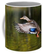 Take-off - Santa Cruz, California Coffee Mug