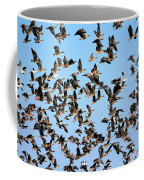 Taking Flight 2 Coffee Mug