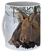 Taking It Easy Coffee Mug