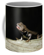 Talking Lizard Coffee Mug