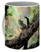 Talking Squirrel Coffee Mug