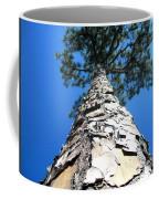 Tall Pine Tree In Summer Coffee Mug