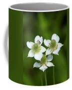 Tall Thimbleweed Dsmf0228 Coffee Mug