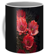 Tangerine Cactus Flower Coffee Mug