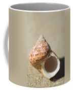 Tapestry Turban Seashell Coffee Mug