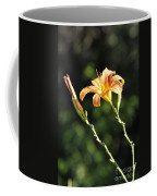 Tasmania Day Lily Coffee Mug