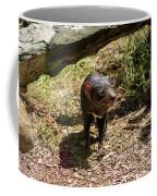 Tasmanian Devil 2 Coffee Mug