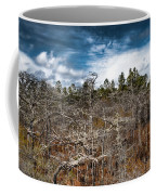 Tate's Hell State Forest Coffee Mug