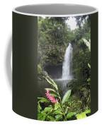 Taveuni, Tavoro Waterfall Coffee Mug