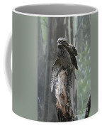 Tawny Frogmouth With It's Eyes Closed And Wing Extended Coffee Mug