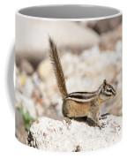 Teasing Chipmunk #3 Coffee Mug