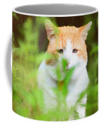 Teddy In The Garden Coffee Mug