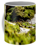 Tennesee Moss Coffee Mug
