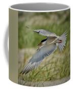 Tern Coffee Mug