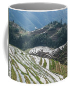 Terrace Fields Scenery In Spring Coffee Mug