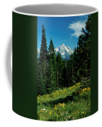 Teton Meadow Coffee Mug