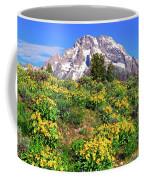 Teton Spring In The Valley Coffee Mug