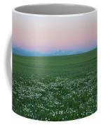Tetons With Daisies Coffee Mug