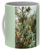 Texas Algerita Bush Coffee Mug