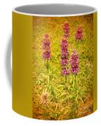 Texas Beebalm  Coffee Mug