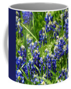 Texas Bluebonnets 002 Coffee Mug
