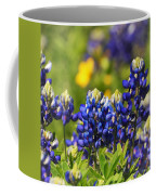 Texas Bluebonnets 006 Coffee Mug