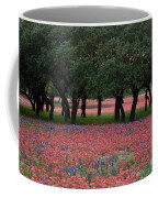 Texas Live Oaks Surrounded By A Field Of Indian Paintbrush And Bluebonnets Coffee Mug