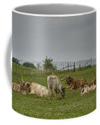 Texas Longhorns And Wildflowers Coffee Mug