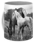 Texas Ranch  Coffee Mug