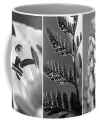 Texture Triptych Coffee Mug