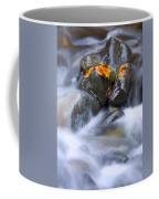 Textures Of Autumn Coffee Mug