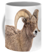 That Handsome Ram Coffee Mug