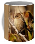 The American Bushtit Coffee Mug