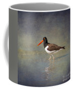 The American Pied Oystercatcher By Darrell Hutto Coffee Mug