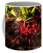 The Art Of Spider Flower Coffee Mug