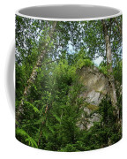 The Base Of Beacon Rock  Coffee Mug