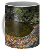 The Bathtub On Garfield Stream Coffee Mug