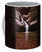 The Beautiful Cedar Falls Coffee Mug