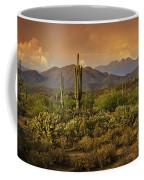 The Beauty Of The Sonoran Desert  Coffee Mug