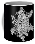 The Beauty Of Winter Coffee Mug