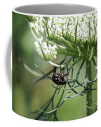 The Beetle Acrobat Coffee Mug