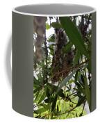 The Beginnings Of A Bushtit Nest Coffee Mug