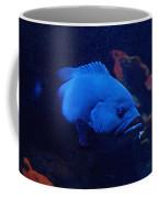 The Big Blue Coffee Mug