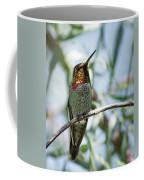 The Bird In The Foil Mask -- Anna's Hummingbird In Templeton, California Coffee Mug