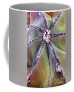 The Bishop's Cap Coffee Mug