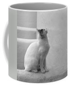 The Blond 4 Coffee Mug